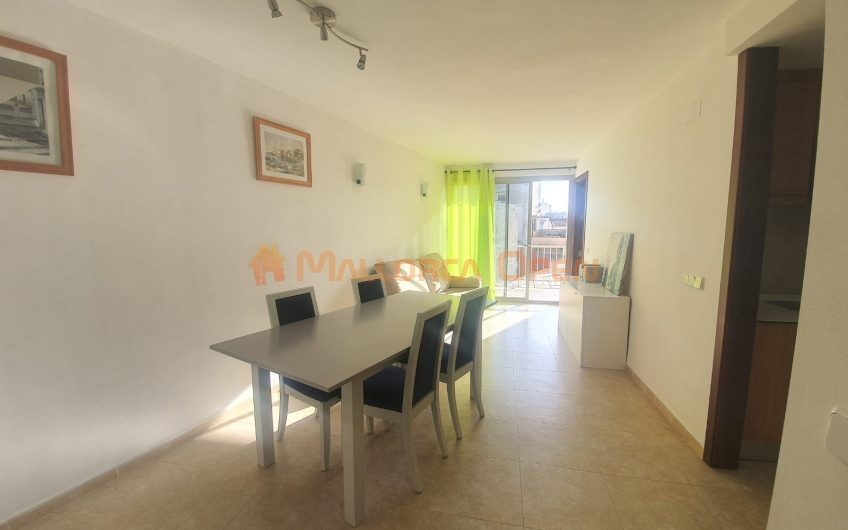 Se alquila apartamento en Manacor